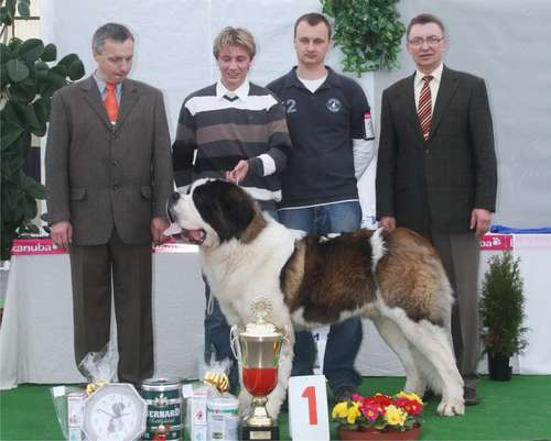 Vitek Junior Club Winner 2011