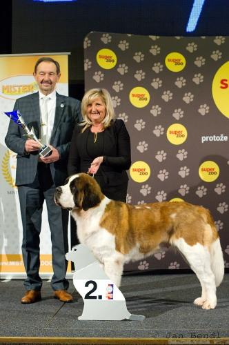 Eva Top Dog 2019
